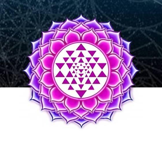 enlightened consciousness logo
